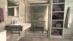 Photo of modern roll-in shower with glass doors